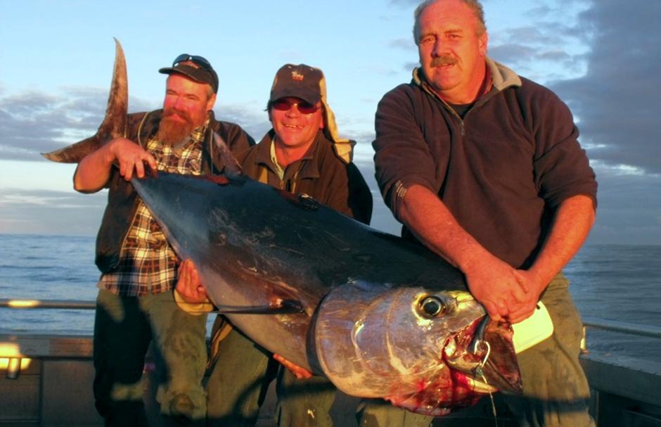 Tuna and sport fishing for Tuna fishing trips
